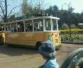 チボリ公園に来ています